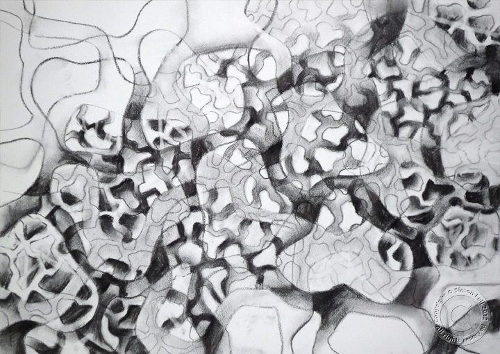 """Line dancing again"" Charcoal drawing on paper"